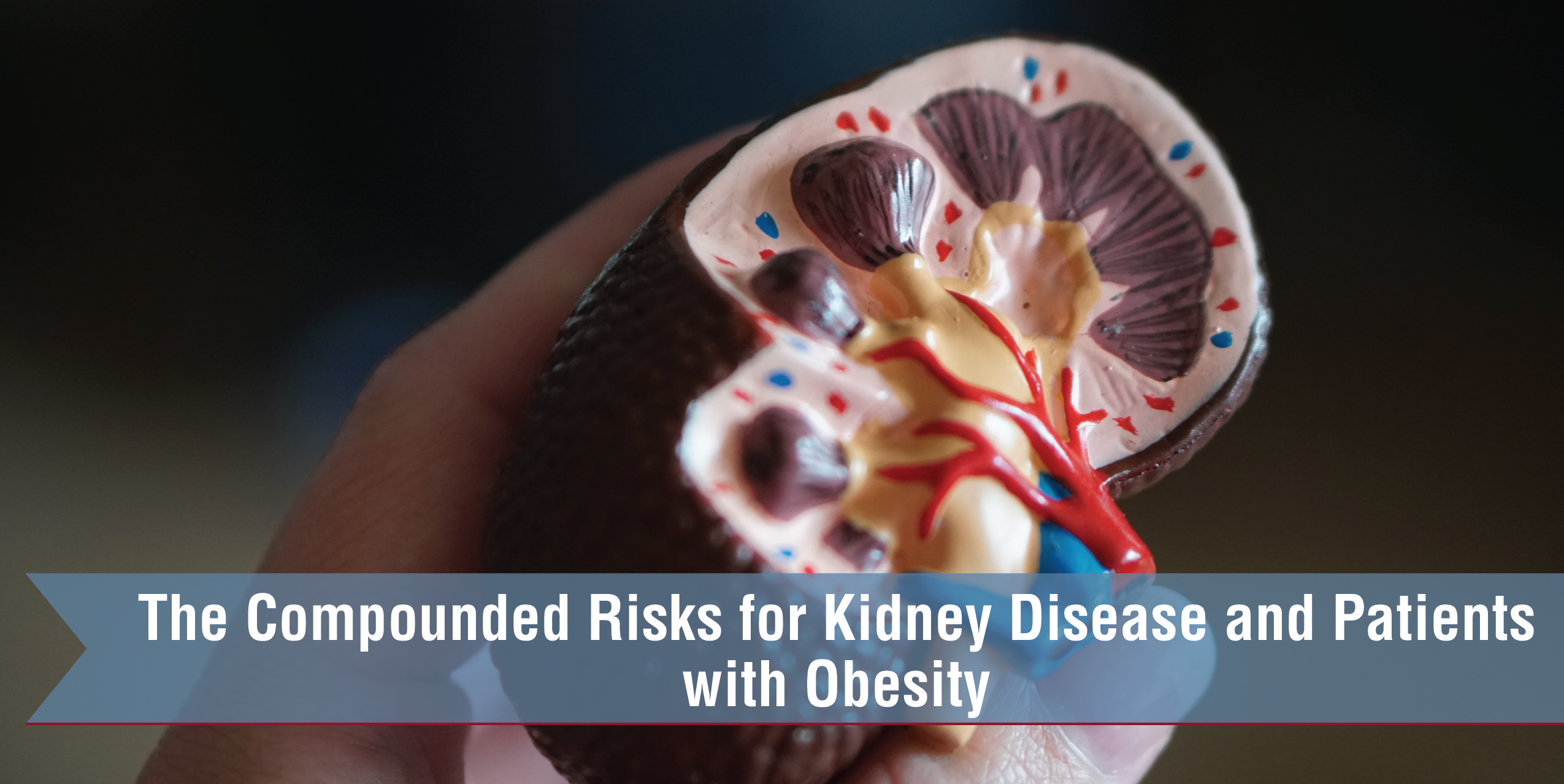 The Compounded Risks For Kidney Disease And Patients With Obesity