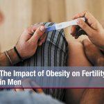 The Impact of Obesity on Fertility in Men